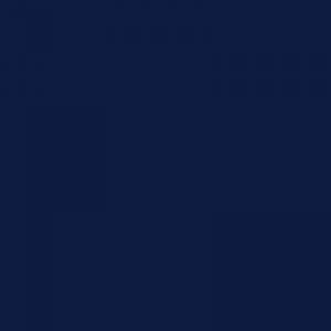 Bleu nocturne 500ml