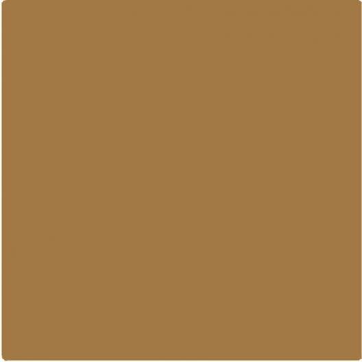 Beige Brun 500ml Peinture Acrylique