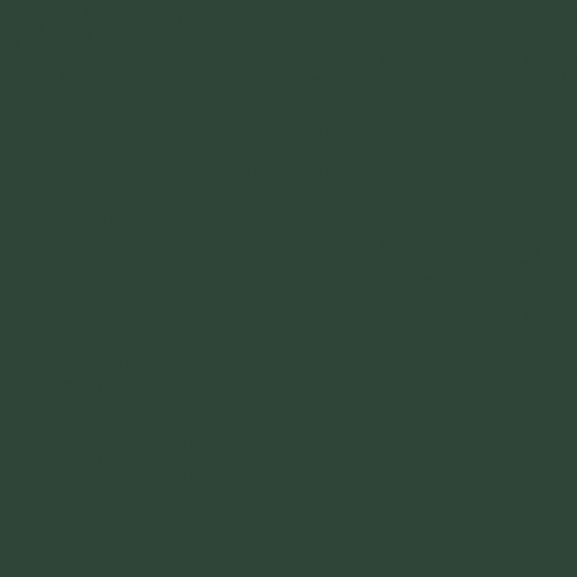 Vert mousse image couleur peinture apyart©