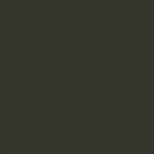 Vert sapin image couleur peinture apyart©