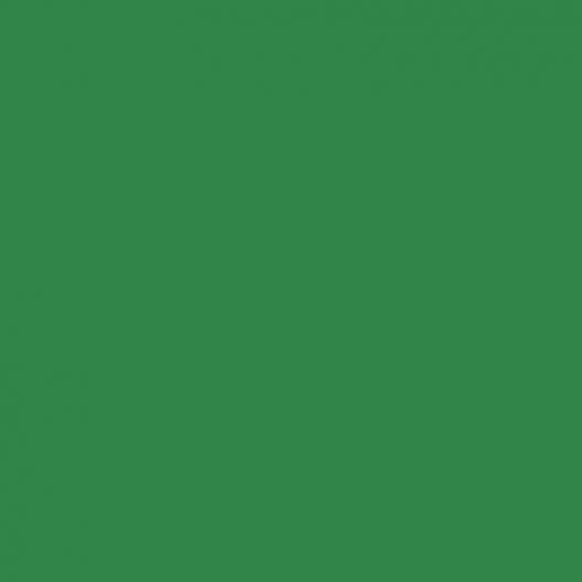 Peinture acrylique Vert signalisation
