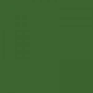 Peinture acrylique Vert fougère