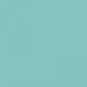 Vert clair 500ml