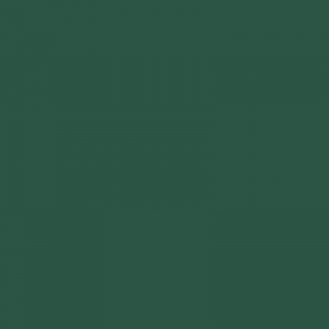 Peinture acrylique Vert pin