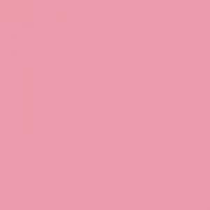 Rose clair 500ml Penture acrylique