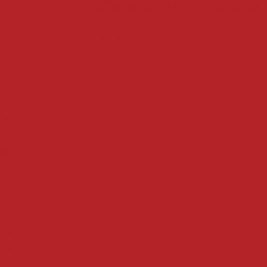 Peinture acrylique Rouge oriental