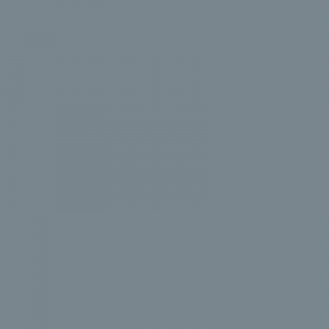 Gris petit-gris 500ml