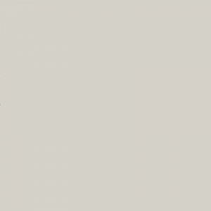 Brun Pastel clair 500ml