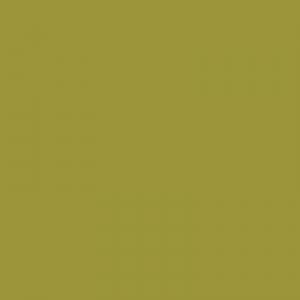 Vert anis 500ml