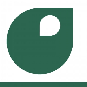 peinture  vert patine apyart