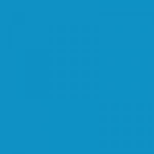 Bleu ARDGP 500ml