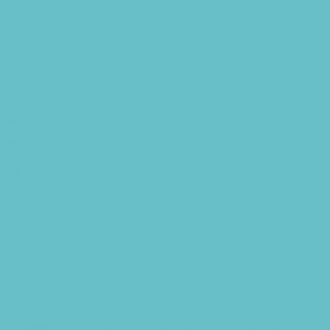 Turquoise Nils 500ml
