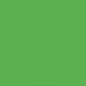 Vert Espoir 500ml