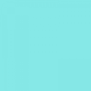 Vert Pastel turquoise 500ml