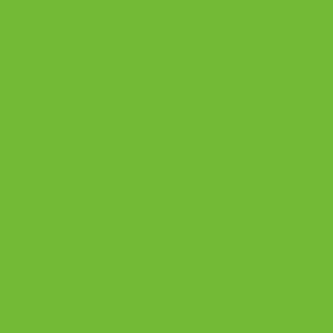 Vert pomme 75ml