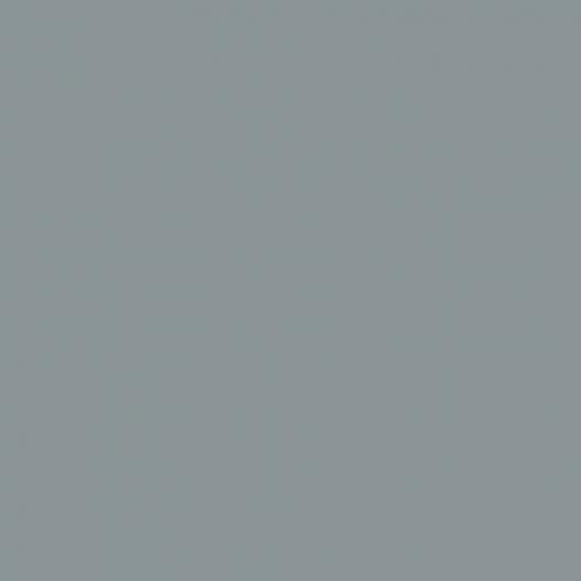 gris argent peinture 75 ml