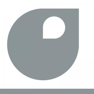 gris argent peinture apyart 75 ml