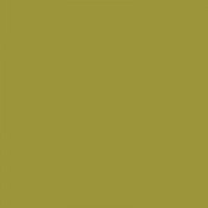 Vert Anis 75ml