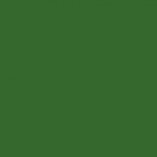Vert herbe peinture acrylique