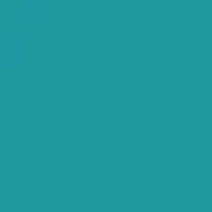 Turquoise Scotie 500ml