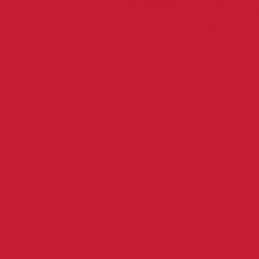 Peinture acrylique Rouge framboise