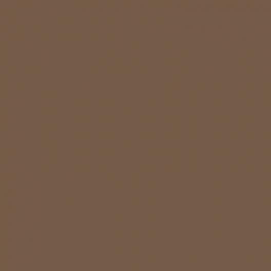 Peinture acrylique Brun pâle