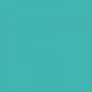 Turquoise vert 500ml