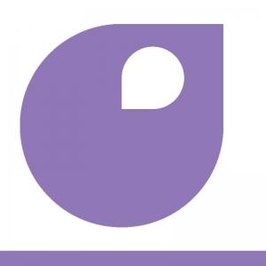 palette violet fat apyart