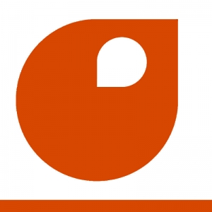 orange pur couleur peinture 500 ml