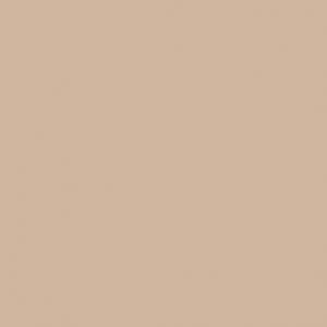 Peinture-acrylique-beige