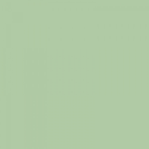 Vert blanc 500ml