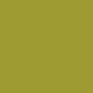 Vert anis 1L