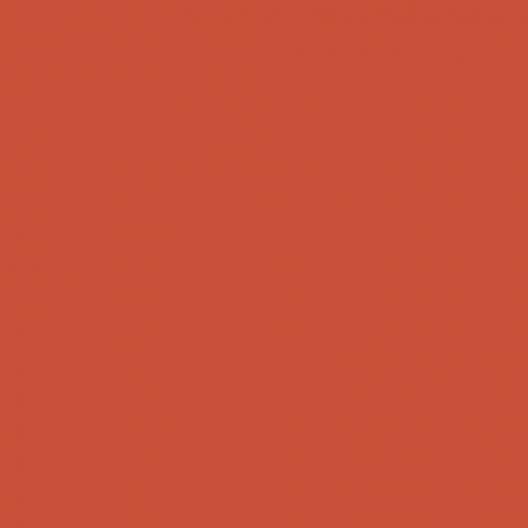 orange sanguine couleur peinture 1 litre
