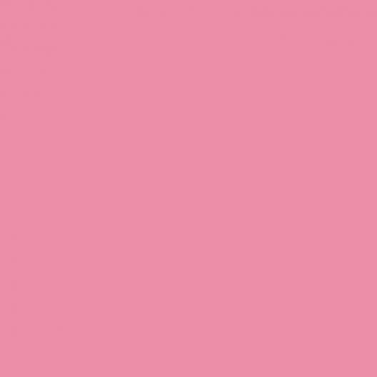peinture Rose Rakel W.  500ml