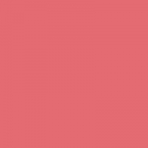 Rose Corail 1 litre