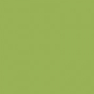 Vert pistache peinture ApyArt 500ml