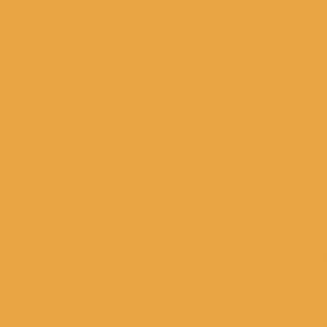 jaune flamme 1 litre