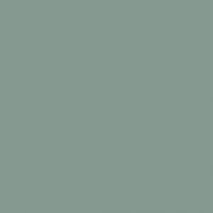 Vert Gris pastel 2L