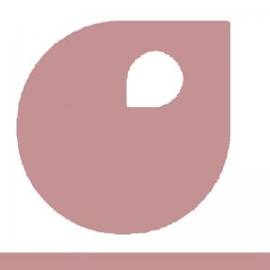 rose poudré palette apyart