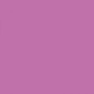 Rose indien peinture apyart