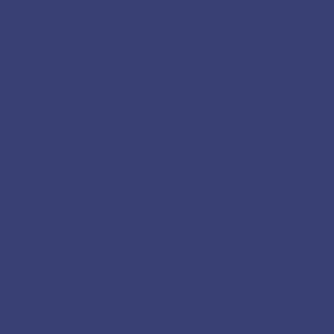Bleu Indigo nuancier peinture apyart