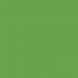 vert Espoir 2 litres