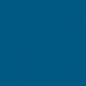 Bleu signalisation 500ml